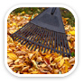 a rake on top of golden color leaves