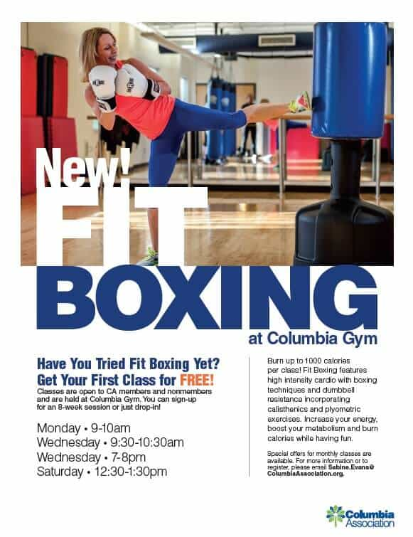 fit boxing flyer