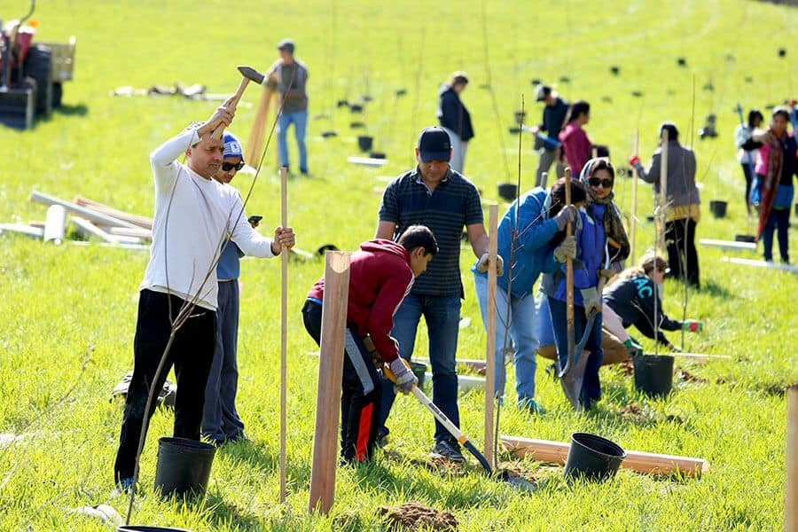 images of volunteers working