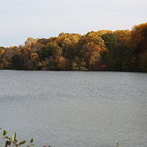 fall image of a lake