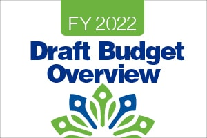 draft budget overview
