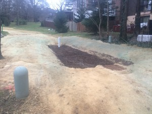 Finished bioretention at Faulkner Ridge Station (another angle)